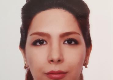 Persisch lernen und verbessern mit Muttersprachlerin Mahshid in Wien